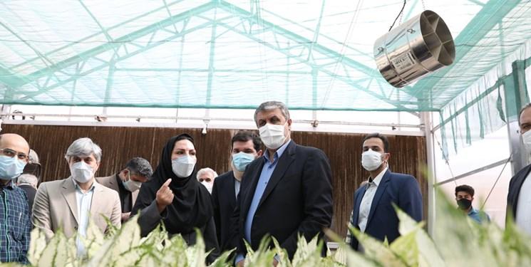 رئیس سازمان انرژی اتمی از سایت هستهای کرج بازدید کرد