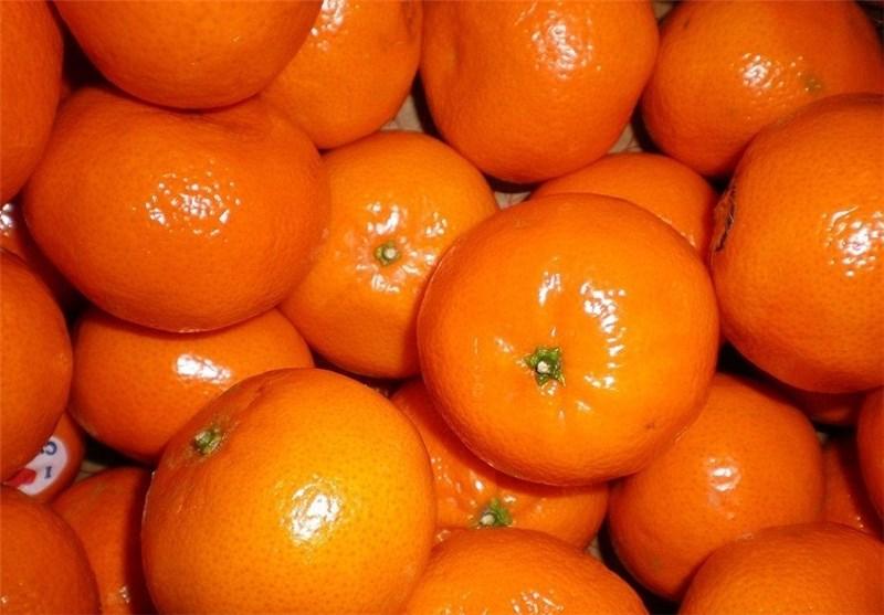 واکنش تعزیرات به عرضه نوبرانه میوه نارنگی در بازار