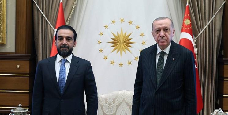 رئیس پارلمان عراق با اردوغان در آنکارا
