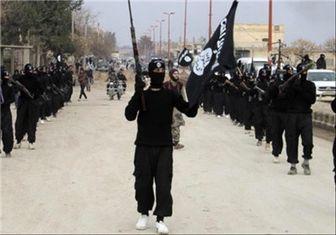 پیشنهاد ۲۵ هزار دلاری داعش به یک نوجوان