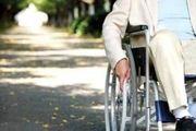 74 میدان و بازار میوه و ترهبار برای جانبازان و معلولان مناسب سازی شده است