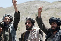 طالبان خواستار به دست گرفتن دولت موقت شد