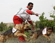 اعزام سگهای زندهیاب به مناطق زلزلهزده