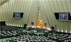 اولین پیادهروی مجلس نهمیها در صحن علنی