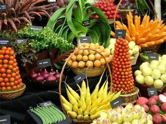 محصولات ارگانیک ضرورت دنیای امروز