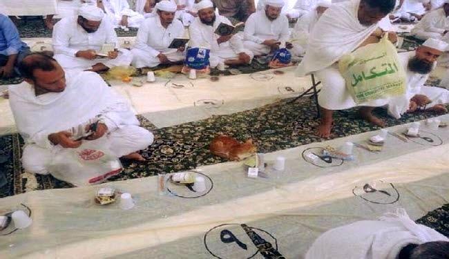 گربه ای که درمسجدالحرام منتظر افطاره !! + تصاویر