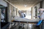 آخرین وضعیت و آمار کرونا امروز 29 دی/ جان باختن 83 بیمار  در شبانه روز گذشته