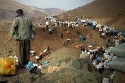 بی تدبیری دولت در ماجرای کولبران