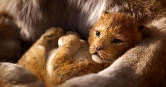 تصاویر جدید انیمیشن محبوب «شیر شاه» منتشر شد