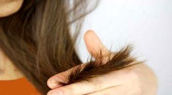 5 راه حل ساده برای درمان موهای خشک و آسیب دیده