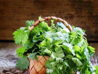 خواص بی نظیر یک گیاه برای درمان نفخ معده