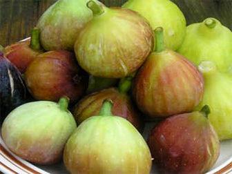 درمان سریع یبوست با این میوه