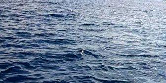 کشف یک پهپاد در آبهای منطقهای لبنان
