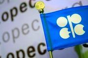 پیشبینی اوپک از افت رشد تقاضا برای نفت در بازار جهانی