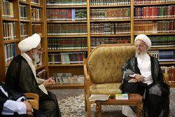 آیت الله مکارم شیرازی: سپاه در خط مقدم پشتیبانی از نظام است