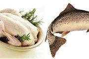 مرغ و ماهی کیلویی چند؟