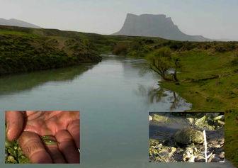 کشاورزان دوباره مسیر رودخانه کر را تغییر دادند