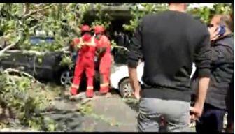 سقوط درخت روی خودروها در خیابان ولیعصر تهران +فیلم