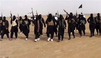 درگیری داخلی سران داعش بر سر فتوا