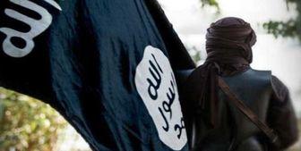 سفارت آمریکا به دنبال ایجاد تشکیلات جدید داعش در جنوب عراق است