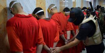 بازداشت ۱۱ داعشی در نینوا
