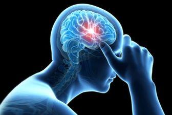 عواملی که سبب کوچ شدن مغز می شوند