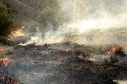 آتش بیرحمانه به جان جنگلهای گچساران افتاد