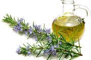 با این گیاه سلامت بدن خود را تضمین کنید!