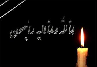 امام جمعه سبزوار دار فانی را وداع گفت