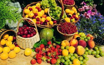 افزایش ۳۰ درصدی تولید محصولات باغی