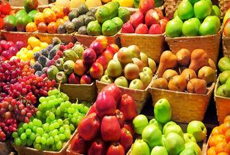 اجرای الگوی کشت سبب توسعه صادرات محصولات کشاورزی می شود
