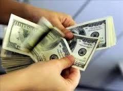 دلارهای خانگی در راه بازار