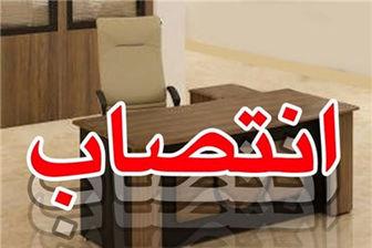 2 انتصاب جدید در وزارت ارشاد