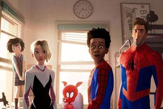 زنان عنکبوتی در راه سینما