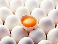 تخممرغهای مازاد در انتظار تامین اعتبار ذخیرهسازی