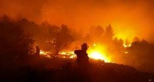 آتش سوزی در شهرک صهیونیست نشین «گوش عتسیون»