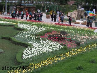 بزرگترین فرش گل خاورمیانه در پارک چمران کرج/تصاویر