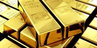 قیمت جهانی طلا به بالاترین سطح ۱۴ ماهه رسید