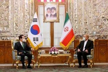 دیدار نخست وزیر کره جنوبی با رئیس مجلس شورای سلامی/گزارش تصویری