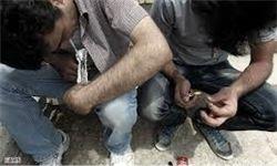 شناسایی ۲۲۰ هزار معتاد در تهران