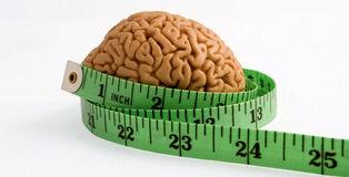 ارتباط بیاشتهایی با اندازه مغز!