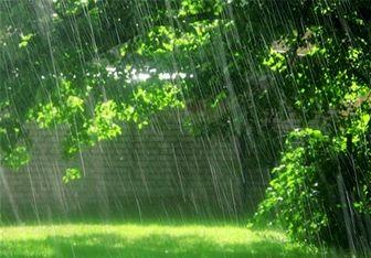 سواحل خزر همچنان بارانی است