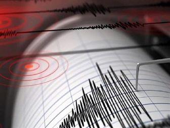 هنگام وقوع زلزله چه باید کرد؟/ اینفوگرافی