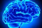 تاثیر هیپنوتیزم بر عملکرد مغز