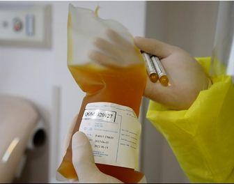 بهبود یافتگان کرونا برای اهدای پلاسما، ۲۸ روز پس از بهبودی اقدام کنند
