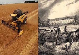 میزان دستمزد کارگران مشاغل منتخب کشاورزی