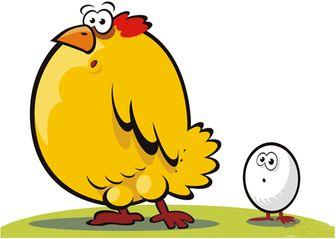 افزایش قیمت مرغ و تخم مرغ