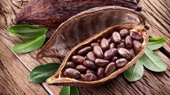 از خواص درمانی کاکائو چه میدانید؟