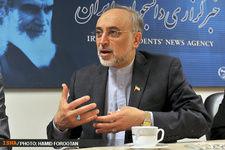 صالحی: ایران و ۱ + ۵ به این نتیجه رسیدهاند