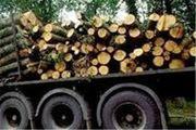 ۱۰ تن چوب جنگلی قاچاق در چهارمحال و بختیاری کشف شد